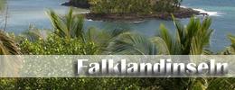 Flüge Falklandinseln
